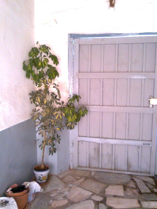 Venta casas chalets ciudad real - Casa para restaurar ...